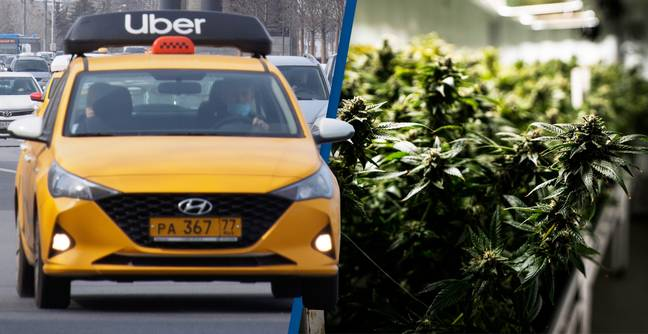 Uber Will Start Cannabis Delivery Service If Law Changes, Says CEO