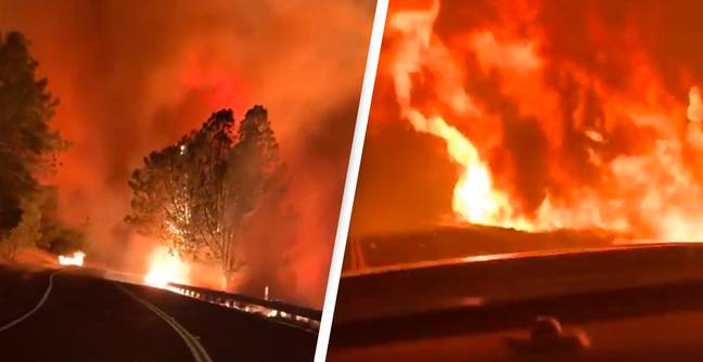 Terrifying Video Shows What Driving Through Hellish California Wildfires Is Like