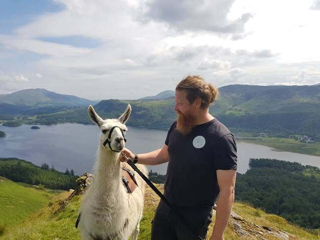 Terry with a llama (UNILAD)
