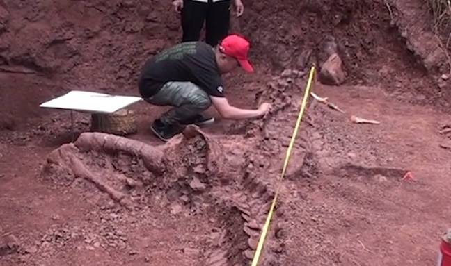 Paleontologist dusting off fossil (AsiaWire)