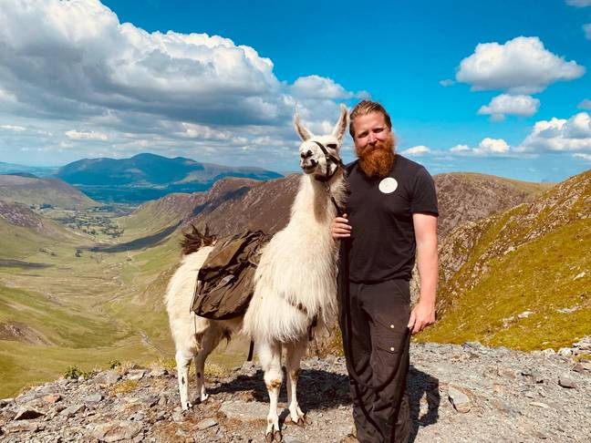 Terry with a llama (Supplied)