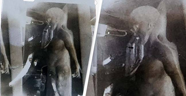 Frame From 'Alien Autopsy' Video To Be Sold For At Least $1 Million