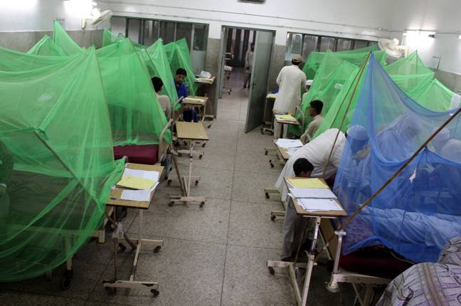 Medical mosquito nets (PA)