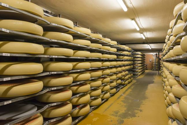 Emmental cheese wheels in Switzerland. (PA Images)