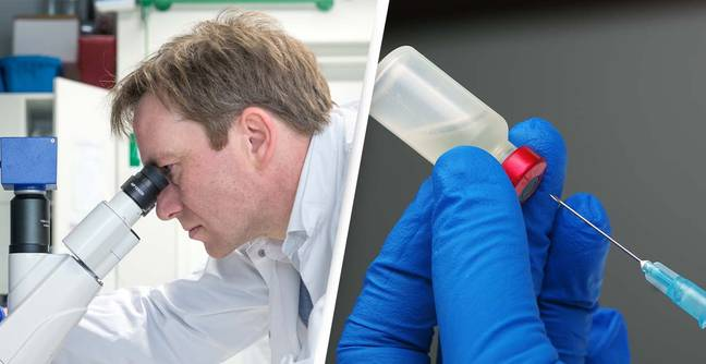 'Trojan Horse' Drug That Kills Cancer Without Damaging Nearby Tissue Successfully Tested