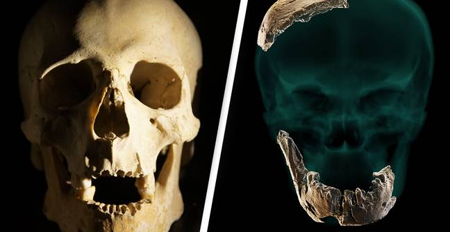 New Type Of Human Discovered After Recovery Of 120,000 Year Old Fossil