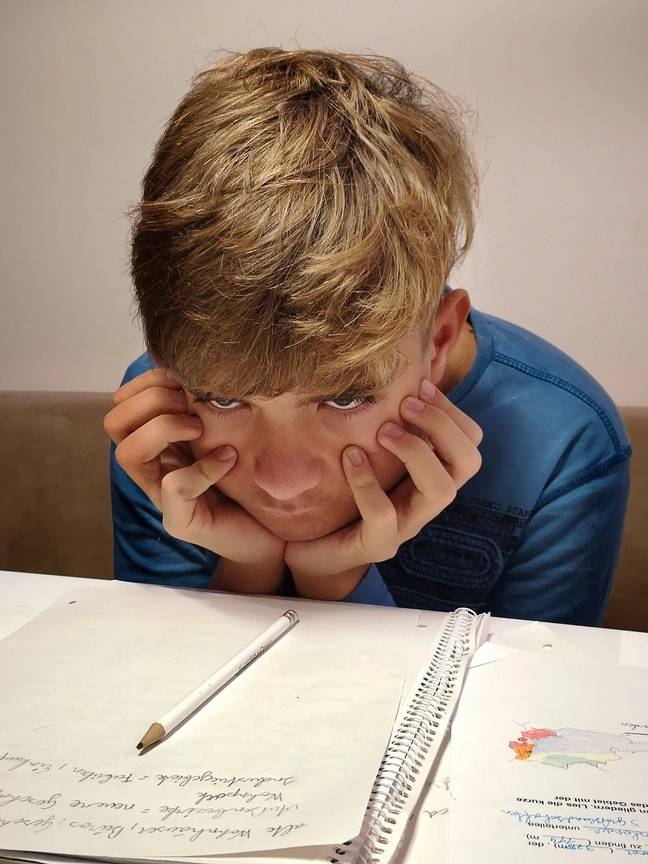 Frustrated student (Pixabay)