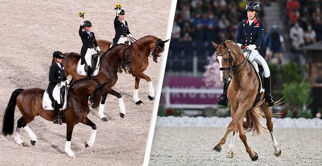 Why Dressage Is Still An Olympic Sport In 2021