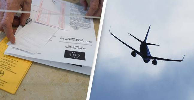 Two Holidaymakers Fined $25,000 For Faking Covid Vaccination Documents