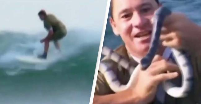 Steve Irwin Wears Khaki Outfit While Surfing Before Grabbing Snake In Iconic Resurfaced Video
