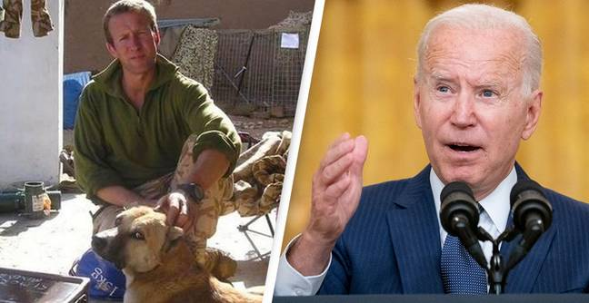 Afghanistan: Former Marine Blames Biden For Failure To Rescue 200 Cats And Dogs