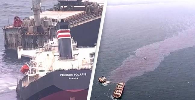 40,000-Ton Cargo Ship Snaps In Half Leaving Three-Mile Long Oil Spill