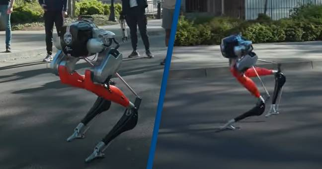 Robot Makes History By Completing 5k Run