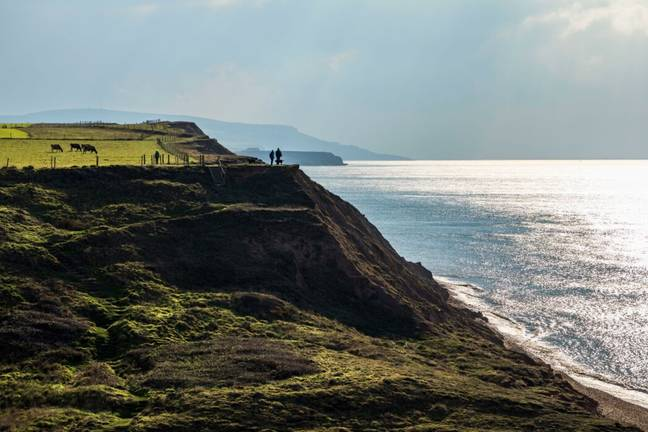 Brighstone Bay on the Isle of Wight (Alamy)