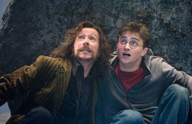 Harry Potter and the Order of the Phoenix. (Warner Bros.)