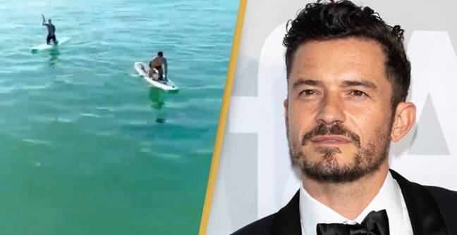 Orlando Bloom Encounters Great White Shark In Amazing Video