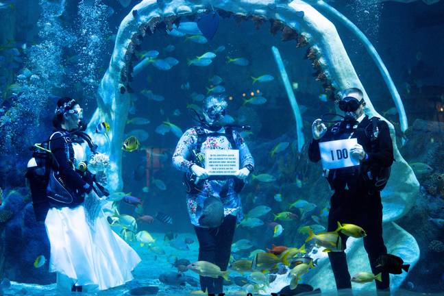 Lisa Huggins and Chris Jackson during their underwater wedding ceremony at Bear Grylls Adventure, Birmingham. The diving fans were due to marry abroad but had their plans scuppered during Covid, and had been looking for a unique alternative. -Jacob King/PA Wire/PA Images
