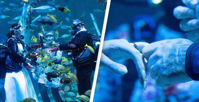 Scuba Diving Couple Have One Of UK's First Underwater Wedding