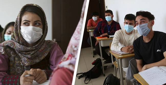 Taliban Says Women Can Study But Classrooms Must Be Segregated