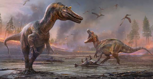Two New Dinosaur Species Discovered In The Isle Of Wight