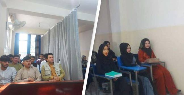 Afghanistan: Classrooms Segregated By Gender Under Taliban Rule