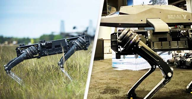 Robot Dog Carrying Sniper Rifle Sparks Controversy