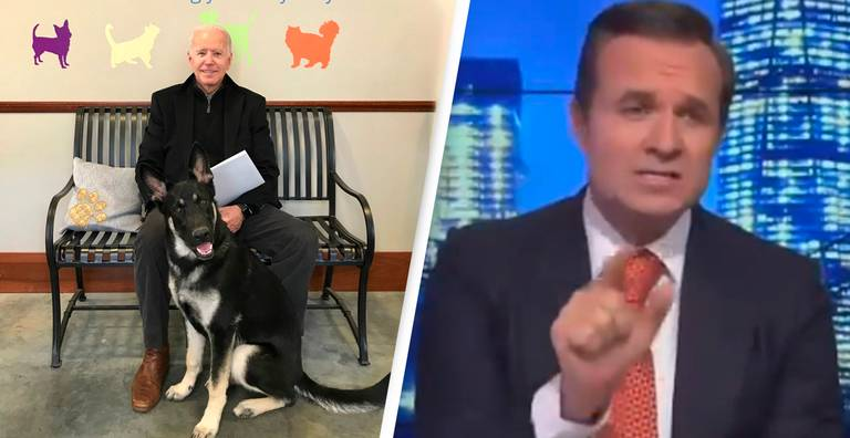 Right-Wing Talk Show Host Goes On Bizarre Rant Attacking Joe Biden's Dog