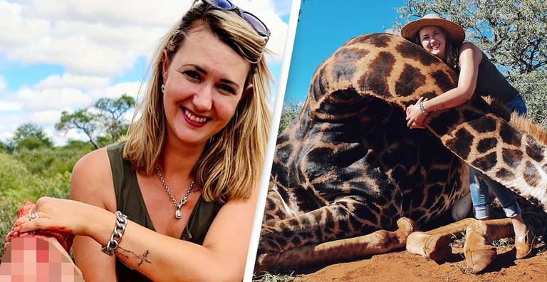 More Than 12,000 People Sign Petition To Ban Giraffe Heart Trophy Hunter From Facebook