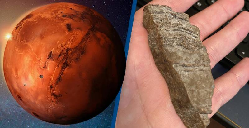 Scientist Licks Rock From Mars Because Twitter Asked Him To