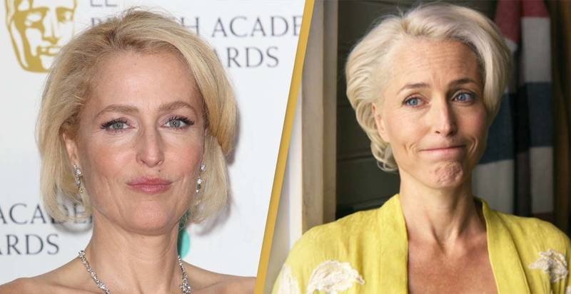 Sex Education's Gillian Anderson Was Awarded A Very NSFW Cake Following Emmy Win