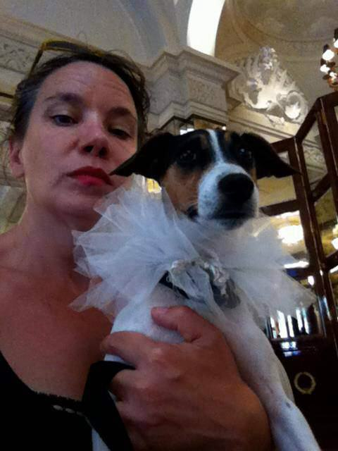 Amanda Rodgers: The Woman Who Married Her Dog image