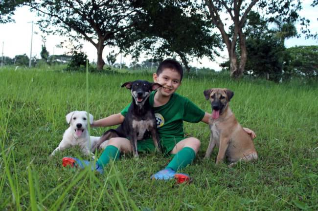 Little Lad Rescues Dogs, Internet Responds In Amazing Way ad 136881459