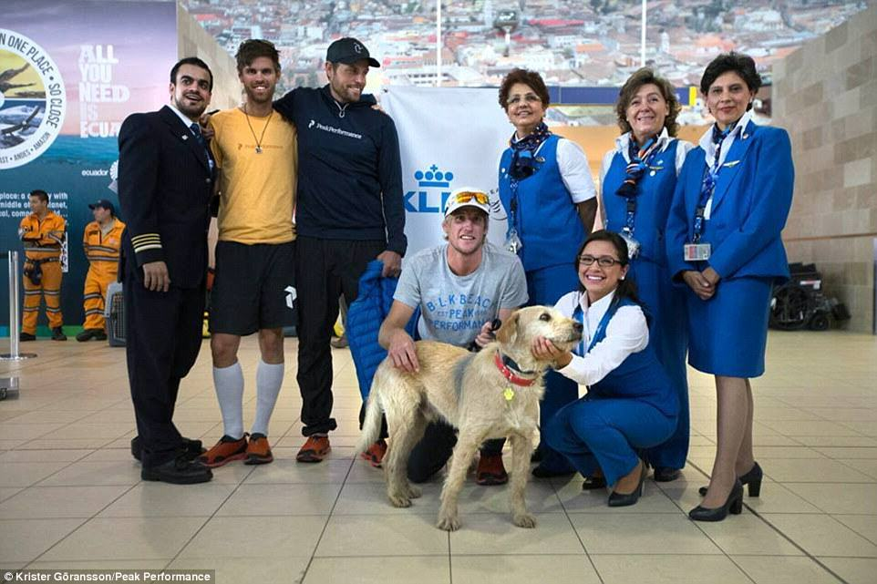 Stray Dog Completes 400 Mile Race With Extreme Sports Team, Finds New Home 236A163B00000578 0 image 26 1416753542271