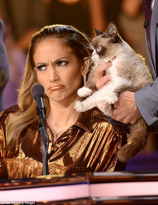 Internet Sensation Grumpy Cat Has Made Its Owner Over £60 Million 23D77C9000000578 2864212 She even made an appearance onstage at FOX s American Idol XIII  a 8 1417963545815
