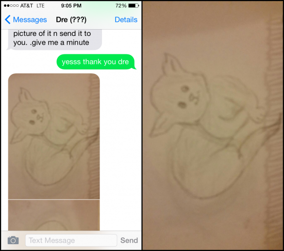Lad Gets Trolled Into Swapping Animal Sketches For Nudes 31