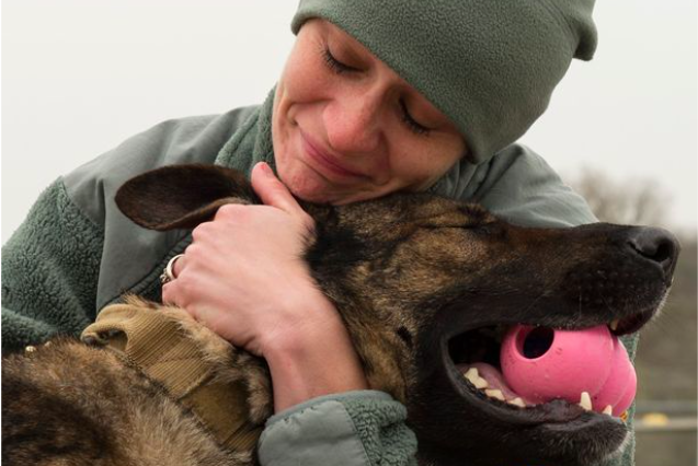Army Dog Gets Tragic Send Off After Being Diagnosed With Terminal Cancer army 2 637x426