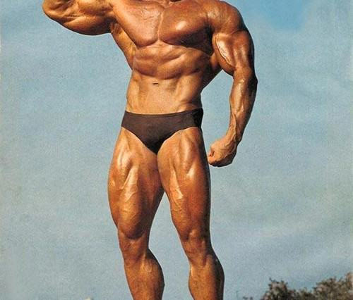 Guy Takes To Reddit To Detail Gym Disaster, Gets Motivational Reply From Arnold Schwarzenegger arnie2 500x426