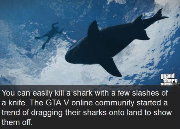 Interesting Things People Discovered Playing Grand Theft Auto V gta5
