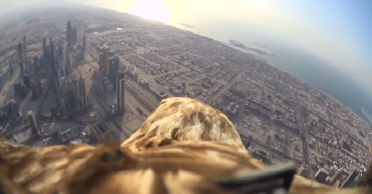 This POV Video From An Eagle As It Descends From The Worlds Tallest Building Is Incredible iojug