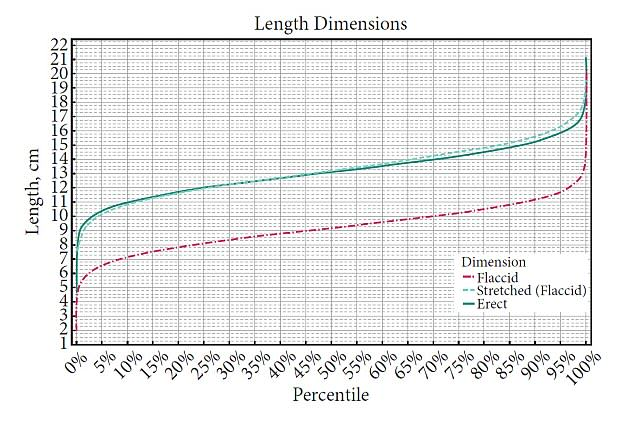 Average Penis Size Confirmed By New Scientific Study length