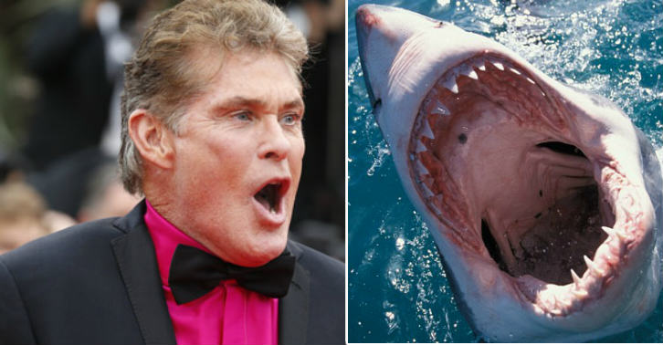 David Hasselhoff Has Been Cast In The Upcoming Sharknado 3, Making It Even More Amazingly Shit shark thumb