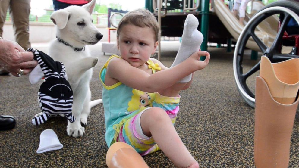 Tennessee Toddler Born Without Feet Gets Puppy Without a Paw 183