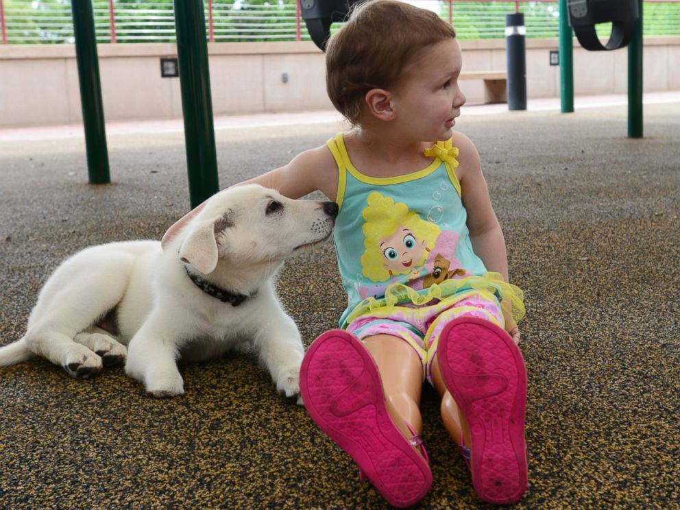Tennessee Toddler Born Without Feet Gets Puppy Without a Paw 29