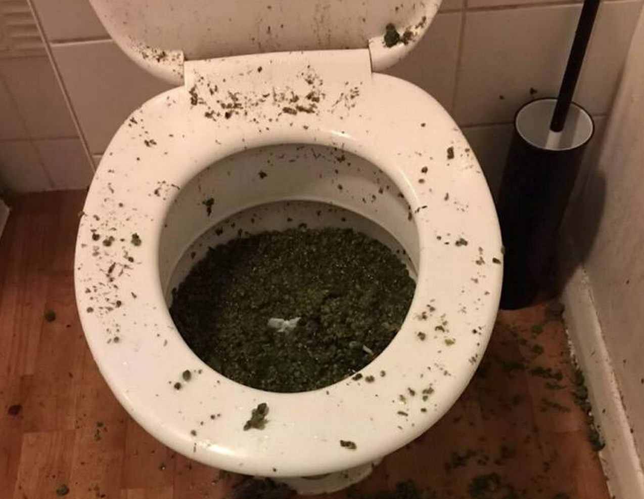 Police Find Toilet Full Of Weed After Smelling It Through The Letterbox Screen Shot 2015 04 29 at 21.58.11