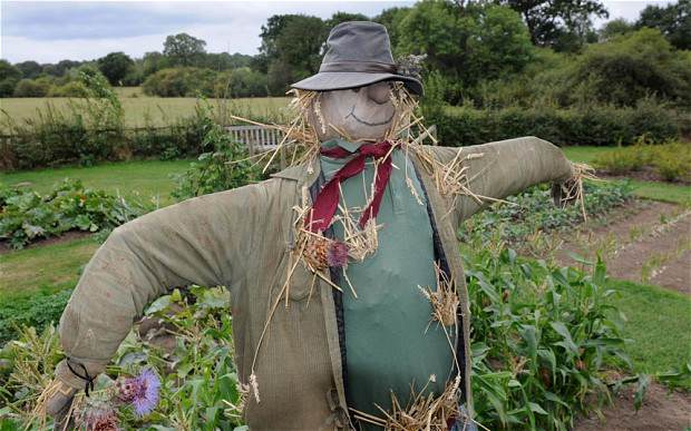 Man Who Had Sex With A Scarecrow Is Found Dead scarecrow