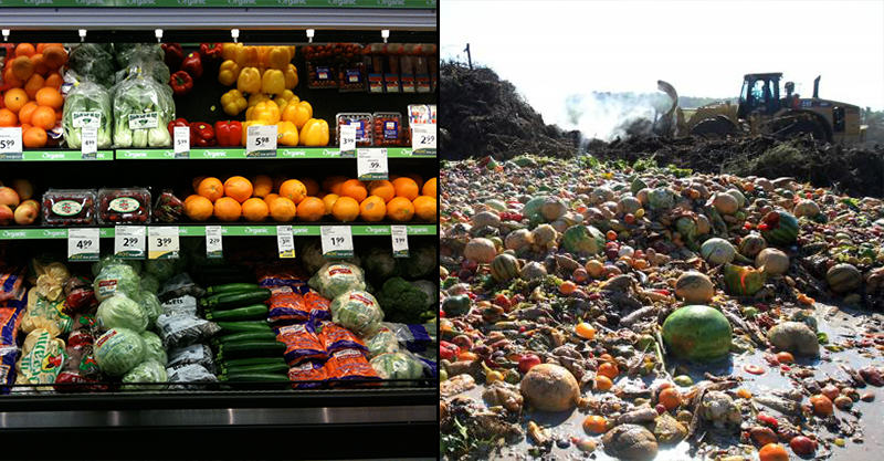 Sign Our Petition To Force Supermarkets To Donate Unsold Food 1127
