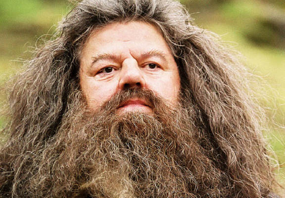 Study Shows That Beards Contain More Poo Than Some Toilets 113