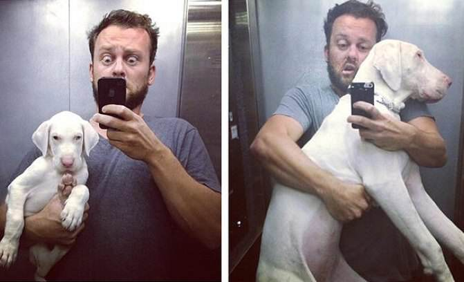 People Thought This Pup Wouldnt Live Very Long, Timelapse Video Proves Everyone Wrong 162