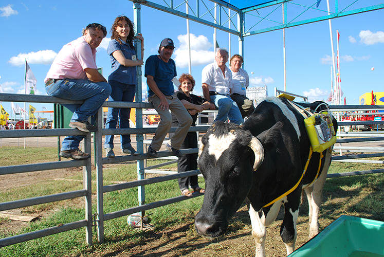 Backpacks For Cows Collect Their Farts And Use Them For Energy 211