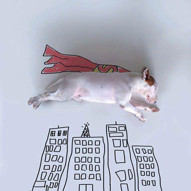 This Artist Uses His Bull Terrier To Create These Amazing Illustrations 91